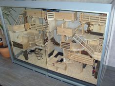 Amazing indoor wooden cage. I'd replace the ladders with ramps for chinchillas and leave a bit more space between the ledges for jumping, but overall it's great.