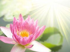 Weekly Horoscope – Lighthouse Feng Shui