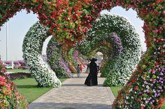 dubai topiary  | Dubai Miracle Garden | Baby in the Sunshine