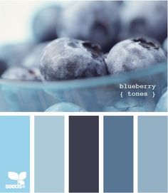 Blueberries feature such a large array of natural blue tones. From dark to light blues, this little berry palette makes a great inspiration piece! Blue Colour Palette, Color Palate, Colour Schemes, Color Combos, Color Patterns, Colour Palettes, Blue Color Pallet, Room Colors, House Colors