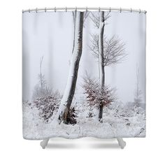 Trees on freezing winter day. For more motives and materials visit my website. #snowytree #freezingday #winterart #artprint #showercurtain Colorful Shower Curtain, Tree Shower Curtains, Shower Curtain Rings, Photography Awards, Fine Art Photography, Snowy Trees, Curtains For Sale, Decor Ideas, Gift Ideas