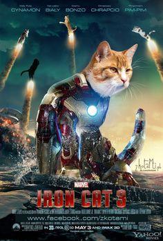 Iron Cat 3   Pic: Bartosz Ostrowski (www.papio.pl)