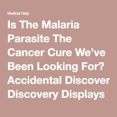 Is The Malaria Parasite The Cancer Cure We've Been Looking For? Accidental Discovery Displays Remarkable Results