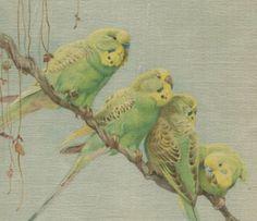 Vtg Winifred Austen Silkscreen Print ~ A Conference ~ Parakeet Birds ~ a Vintage Touch  SOLD