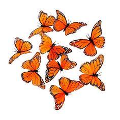 Monarch Butterfly Garland, 9 Butterflies