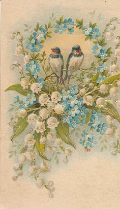 vintage postcard with birds and Forget Me Nots. Decoupage Vintage, Vintage Abbildungen, Vintage Ephemera, Vintage Paper, Vintage Postcards, Vintage Prints, Gravure Illustration, Vintage Illustration, Illustration Blume