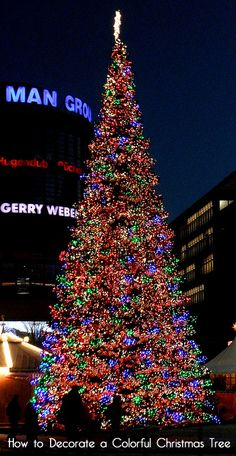 Christmas trees on pinterest beautiful christmas trees How do you decorate a christmas tree