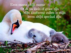 moeder blijf je voor de rest van je leven !   ♥ ♥