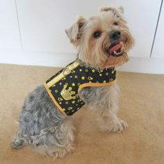 Happy Puppy Designer Dog Accessory – Crown Soft Vest Harness – Color: Black, Size: S « dogsiteworld.com