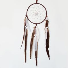 Dreamcatcher: Pheasant with Mother-of-Pearl