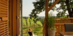 #Urlaub im #Weingarten im #Thermenland #Steiermark