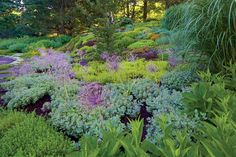 The New American Garden, The Landscape Architecture of Oehme, van Sweden   North Salem Residence, North Salem, NY, photo copyright Frederick Charles, 2015.