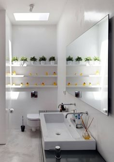 Rubber duckies displayed on bathroom shelves in a modern house designed by Sharon Neuman Architects (Photo: Elad Sarig).  I cannot determine whether the ducks were a pre-existing collection.  Regardless, they're displayed nicely.