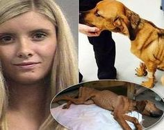 PLEASE SIGN and share - Prosecute Former MTV Star For Animal Cruelty, Banning Her From Future Animal Ownership