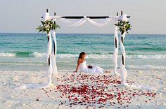 A Beach Wedding For Summer beach wedding-red rose