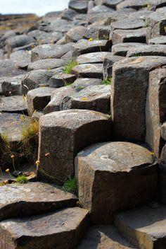 Isle of Mull, Scotland http://www.bethtravel.com/index.php/scozia/scozia-itinerari-consigliati/avventure-nelle-highlands-8gg/ #isola di mull #scozia