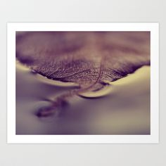autumn Art Print by ingz - $18.00   #ingz #society6 #canvas #decor #print #homedecor #macro #autumn #leaf #gold
