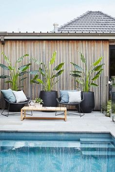 Having a pool sounds awesome especially if you are working with the best backyard pool landscaping ideas there is. How you design a proper backyard with a pool matters. Pool Plants, Outdoor Plants, Outdoor Spaces, Outdoor Living, Tropical Outdoor Decor, Tropical Plants, Outdoor Pool Areas, Plants Around Pool, Outdoor Tiles