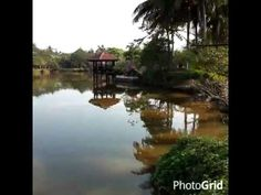 ▶ Photo Flip - Sri Nakhon Khuean Khan Park - YouTube  Thailand Explorer: Bangkok's City Parks  https://flipboard.com/section/bangkok%27s-city-parks-beKTiE  #Thailand #flipboard #travel #traveltips #travelphotos #bangkok #city #park