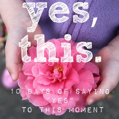 "Yes, This returns! Come along and say ""Yes to this moment"" for 10 days in February. The course is FREE and full of accessible practices to help you create space to be more present in your life."
