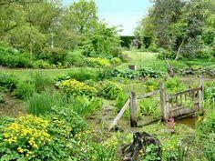 bog gardens - Google Search