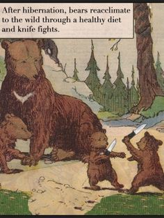 """""""After hibernation, bears reacclimate to the wild through a healthy diet and knife fights."""""""