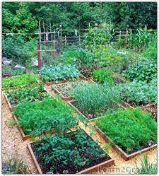 Potager Garden Small square shaped raised garden beds beautiful laundry for a vegetable garden Potager Garden, Edible Garden, Vegetable Garden, Garden Landscaping, Raised Garden Beds, Raised Beds, Raised Gardens, Garden Spaces, Kraut