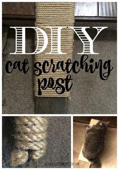 A DIY cat scratching