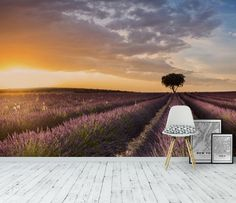 Lavender Tapet