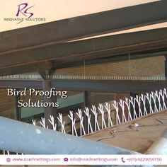 No more worries about pigeon droppings or diseases cause by birds. Say good-bye to bird menace permanently. #BirdControl #NettingSolutions #NylonBirdNetting #BirdProtectionNets #BirdNetJaipur