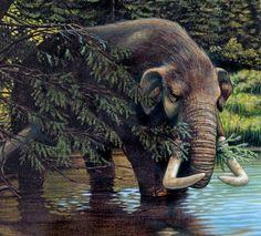 Mastodon by Robert Thom