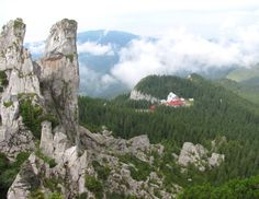 Petele doamnei Carpathians mountains Romania