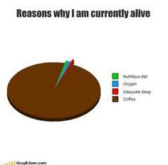 Reasons I'm alive...