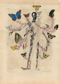 Balint Zsako Collage: my love of human anatomy and nature intertwined