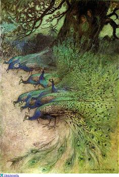 Warwick Gobel Hundreds of peacocks of gorgeous plumes came to the embankments to eat the khai. Folk Tales of Bengal by Rev Lal Behari Day, illustrations by Warwick Art And Illustration, Warwick Goble, Peacock Pictures, Beaux Couples, Peacock Art, Peacock Painting, Peacock Feathers, Peacock Room, Peacock Decor