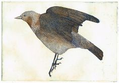 Chestnut-Cheeked Starling by kyokoimazu on Etsy