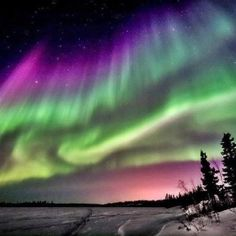 8 Best Places To See The Northern Lights | Travel: Location Abroad |  Pinterest | Northern Lights, Fairbanks Alaska And Alaska.