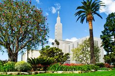 The Los Angeles, California, LDS (Mormon) temple was awesome. It wasn't the architecture that captured my eye as much as the mature landscaping that softened the hard lines of it's architecture to give me some very stunning views of this religious building.