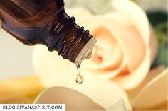 5 Essential Oils For Your Spiritual Journey - Sivana Blog