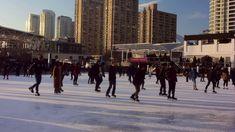 Ice Skating at Harbourfront Rink Toronto Ice Skating, Skate, Toronto, Times Square, Street View, Travel, Trips, Viajes, Skating