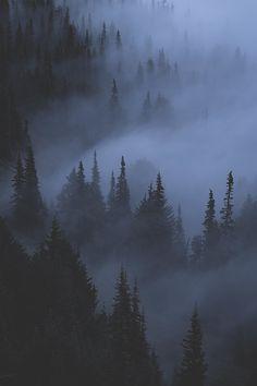 Ghosts in the Shadows - Hurricane Ridge, Washington, USA. Lens For Landscape Photography, Dark Photography, Landscape Photos, Scenic Photography, Aerial Photography, Night Photography, Photography Meme, Kirlian Photography, Umbrella Photography