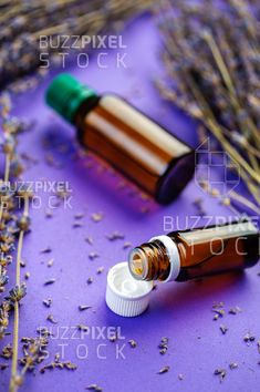 Royalty Free (RF) Photos / Vectors / Ready Made Logos / by BuzzPixelStock Bottles of lavandula essential oil, bunch of dried purple lavender blossom. Essential oil and lavender flowers Lavender Blossoms, Lavender Flowers, Lavandula, Photography For Sale, Bottles, Essential Oils, Essentials, Purple, Essential Oil Uses