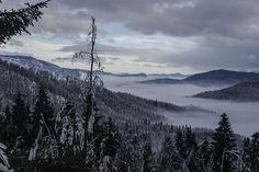 Gorski kotar - Photo by Cvjetko Wolf #lobagolaadventure #mediterra #croatia #outdoor #adventure #balkan #nature