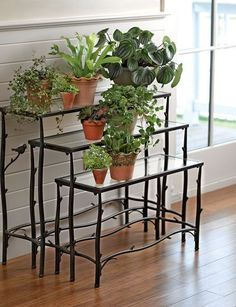 Nesting Branch Plant Stands, Set of 3 Modern Plant Stand, Metal Plant Stand, Diy Plant Stand, Plant Stands, Indoor Garden, Indoor Plants, Outdoor Gardens, Home And Garden, Garden Beds