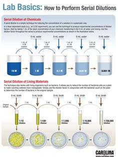 Infographic—Lab Basics: How to Perform Serial Dilutions laboratory science Science Teaching Chemistry, Chemistry Lessons, Biology Lessons, Chemistry Experiments, Science Chemistry, Science Education, Education Logo, Elementary Science, Organic Chemistry