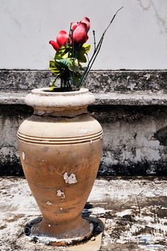Artificial Red Roses in a Marble Vase St. Louis Cemetery No 1 New Orleans