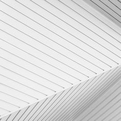 The Direction of Lines on Behance