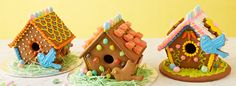 Cute Gingerbread bird houses for spring.