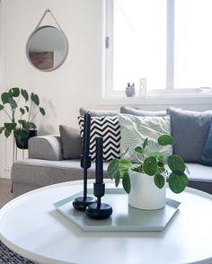 Livingroom  . Nest siste dag av giveawayen. Den avsluttes i morgen når jeg har lagt lille se innlegg lenger ned i feed for å delta. . #boligpluss #interior123 #interior4all #interiorforyou #bobedre #boligplussminstil #interiørmagasinet #room123 #roomforinspo #immyandindi #nordiskehjem #livingroomdetails #livingroominspo #haydesign #strapmirror #nappula #pilea #haykaleido #menuworld #wirepot #iittalanappula