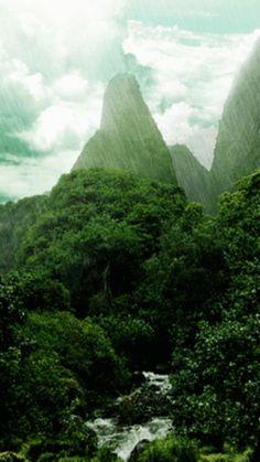 Floresta tropical 360x640 screensaver papel de parede screensaver